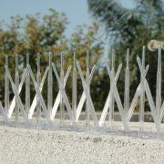 xplastic-bird-spikes-parapet-wall_5.jpg.pagespeed.ic.l1C0UQs3Lk